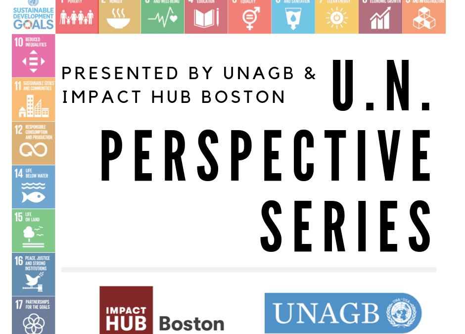 U.N. Perspective Series: Reduced Inequalities